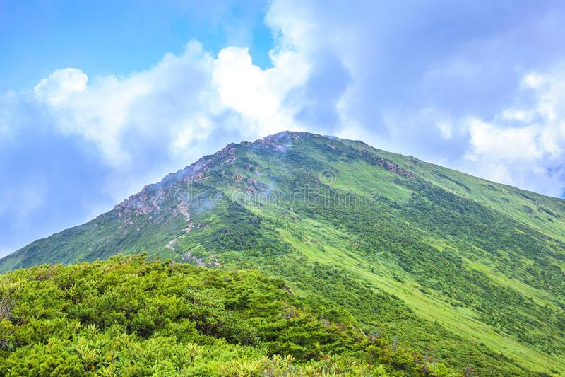 Summer Mountain royalty free stock image