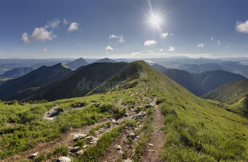 Summer mountain ridge in the Mala Fatra National Park, Slovakia stock photography