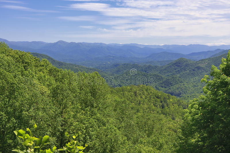Summer in the Mountains royalty free stock photo