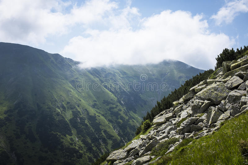 Summer mountains stock photography