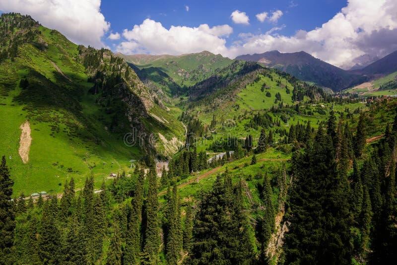Summer in mountains stock photos