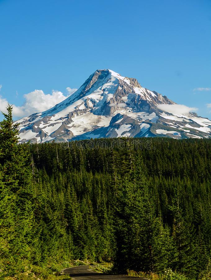 Summer Mt Hood. Off a forest road the craggy peaks and glaciers of Oregon`s Mt Hood is surrounded by dense forests stock image