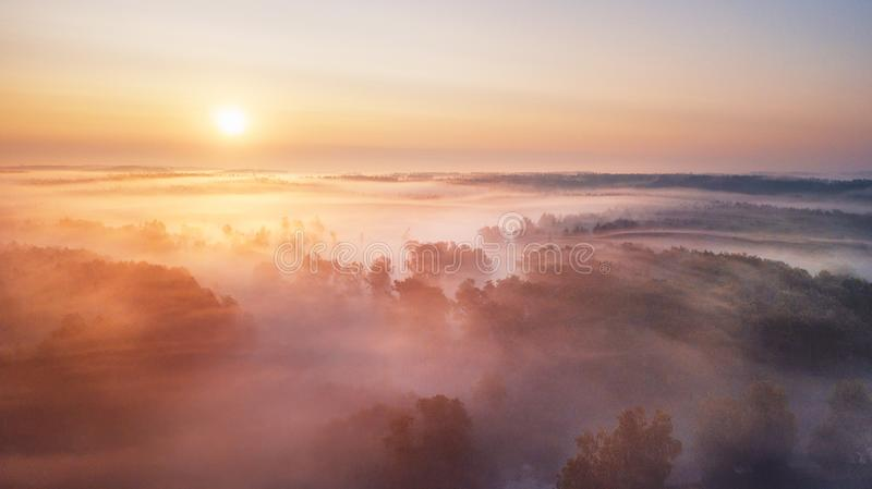Summer nature landscape aerial panorama. Foggy morning river and forest stock photography