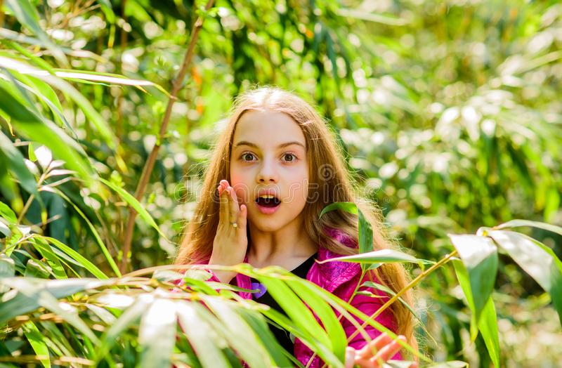 Summer nature. Natural beauty. Childhood happiness. Spring holiday. Green environment. little girl spend free time in royalty free stock images