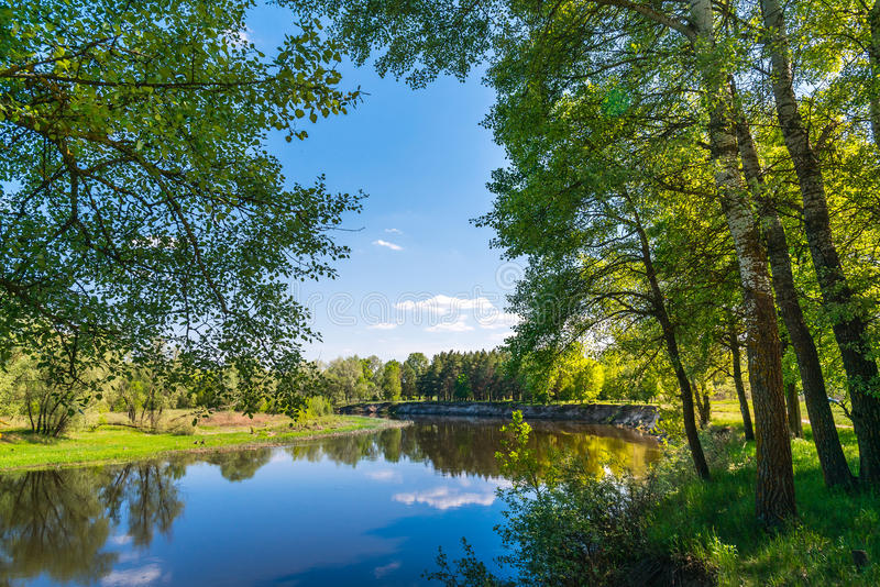 Summer nature with river. Forest outdoor countryside sceneric picturesque. Picture ladscape with river royalty free stock images
