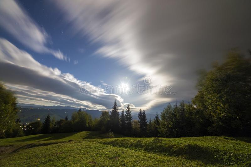 Summer night mountain panorama. Green trees on grassy mountain clearing on cloudy evening sky copy space background, woody hills royalty free stock images