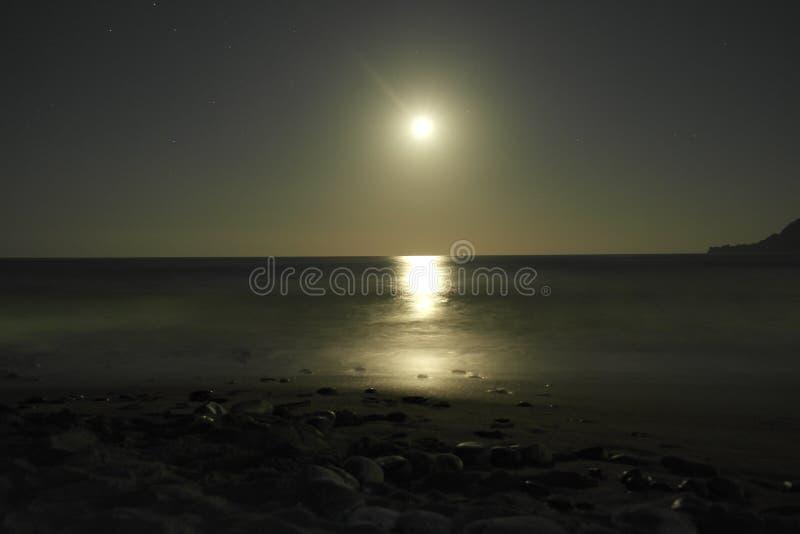 Summer nights stock image
