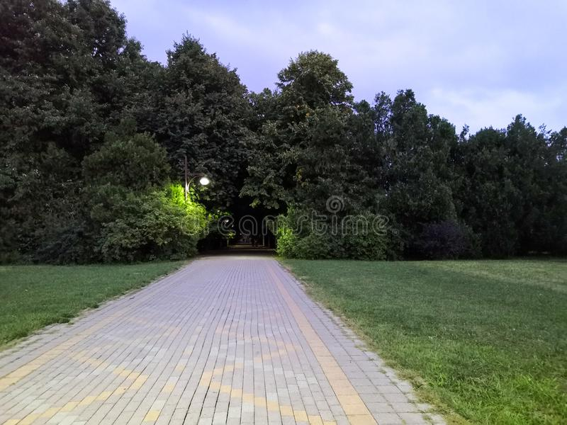 Summer park, Russia. Evening in the city Park. Lantern, trees, paths and lawn. in the background. Summer park, Russia. Wooden benches in an empty night park stock photography