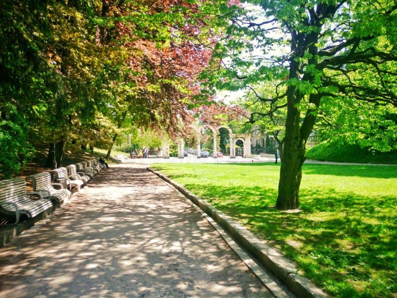 Summer Park. Struiskiy Park in Lviv,Ukraine. Sunny day royalty free stock image