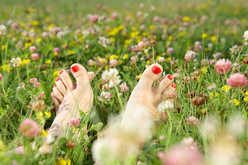 Download Summer Pedicure Royalty Free Stock Image - Image: 9201866