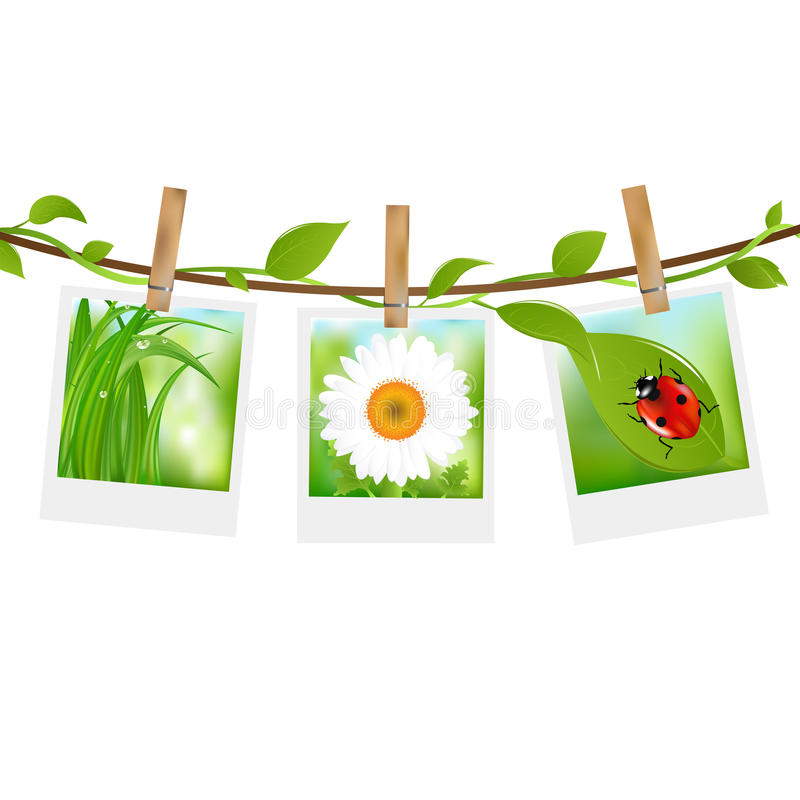 Summer Photos With Clothespins royalty free illustration