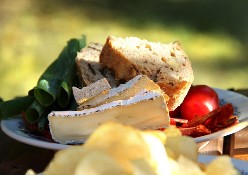 Download Summer picnic stock photo. Image of lunch, green, appetizer - 28496540