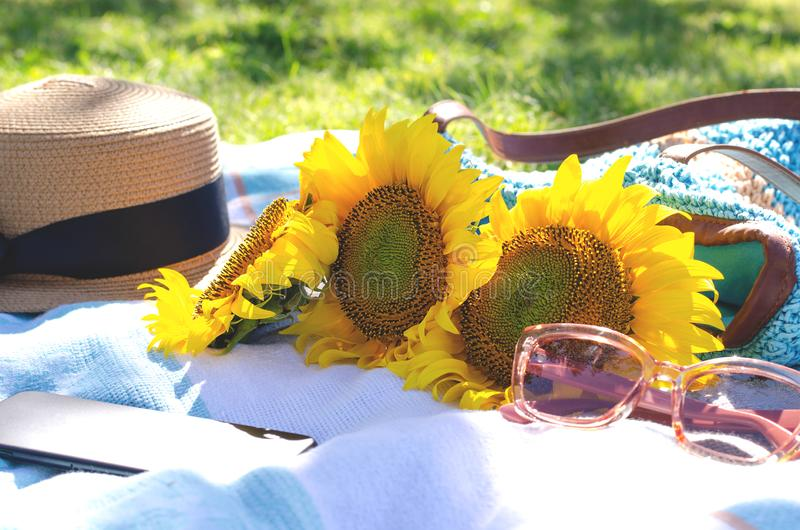 Summer picnic on the green grass with bright accessories stock photo