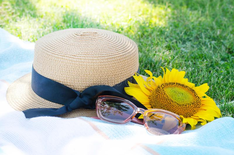 Summer picnic on the green grass with bright accessories stock photography