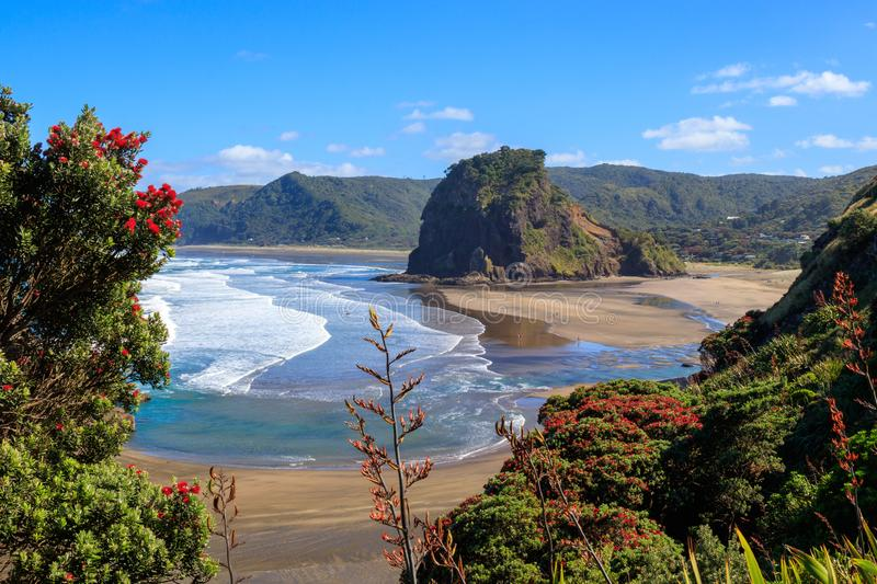 Summer Piha beach and Lion Rock royalty free stock images