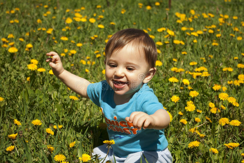 Summer portrait of beautiful baby boy stock image