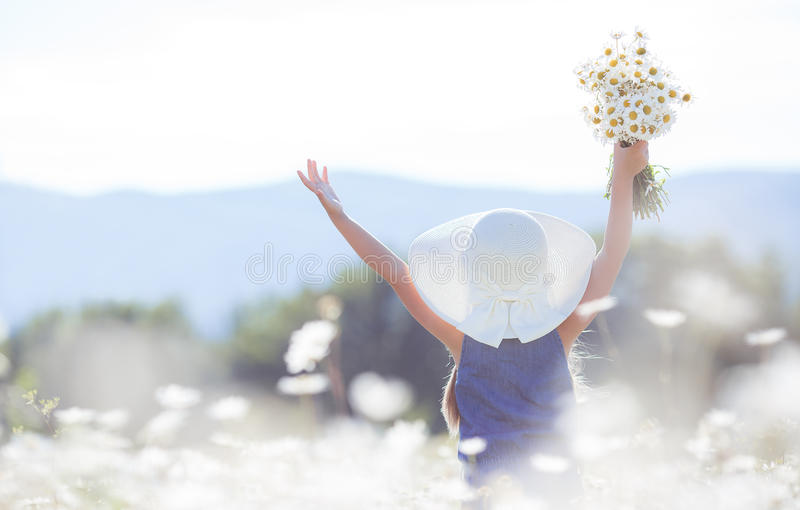 Summer portrait of a little girl in a field of white daisies. royalty free stock photography