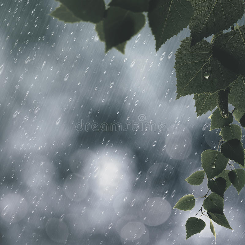 Summer rain. Abstract seasonal backgrounds stock photos