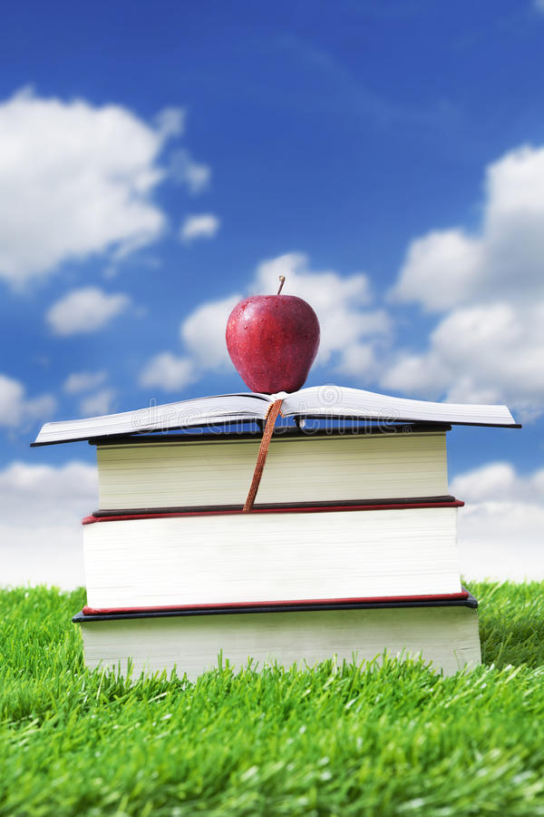 Download Summer Reading Time stock image. Image of learn, education - 24301867