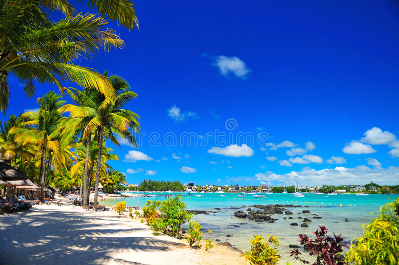 Download Summer Resort stock photo. Image of summer, relax, mauritius - 4624222