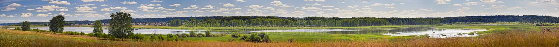 Summer river royalty free stock photos