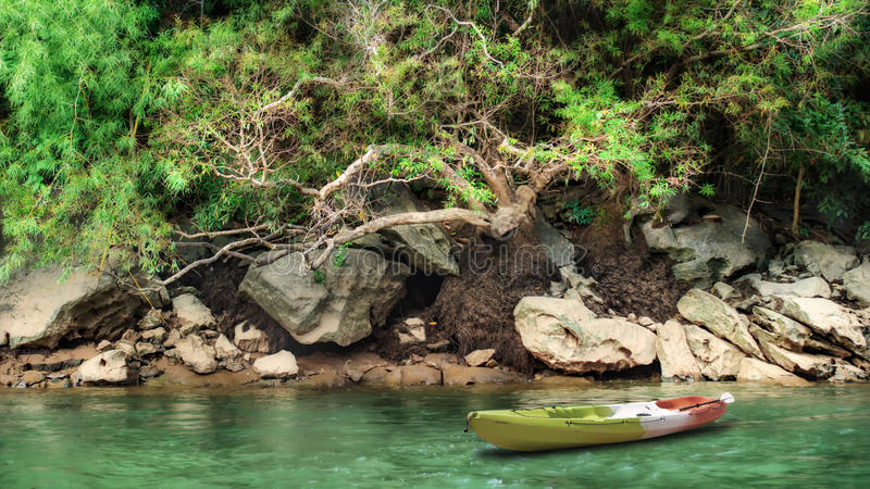 Summer river with kayak boat. And tree in the forest stock photos