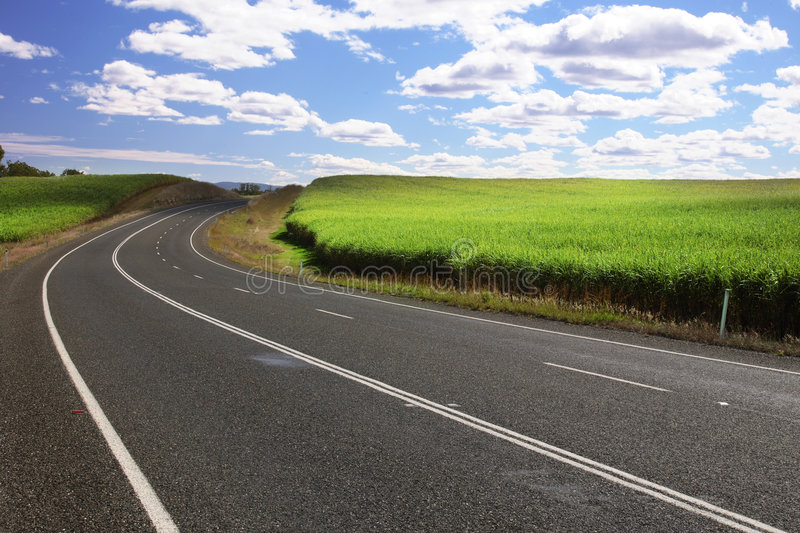 Summer Road royalty free stock images