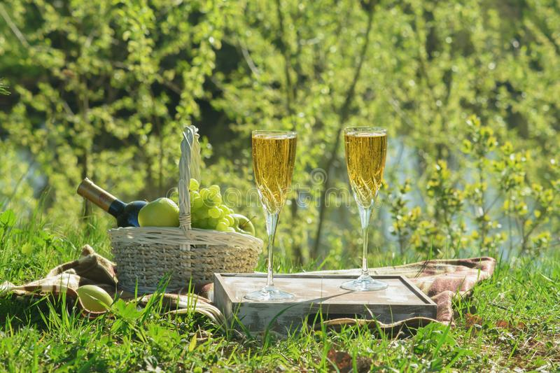 Summer Romantic Gourmet Picnic in Park Side View royalty free stock image