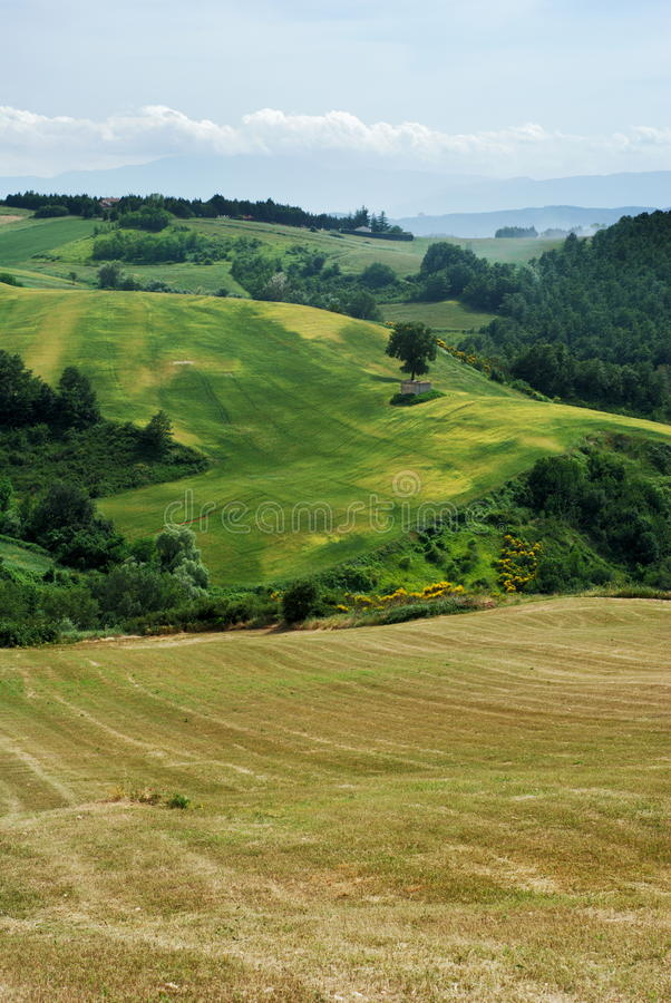 Summer rural landscape. From center Italy (Molise stock photos