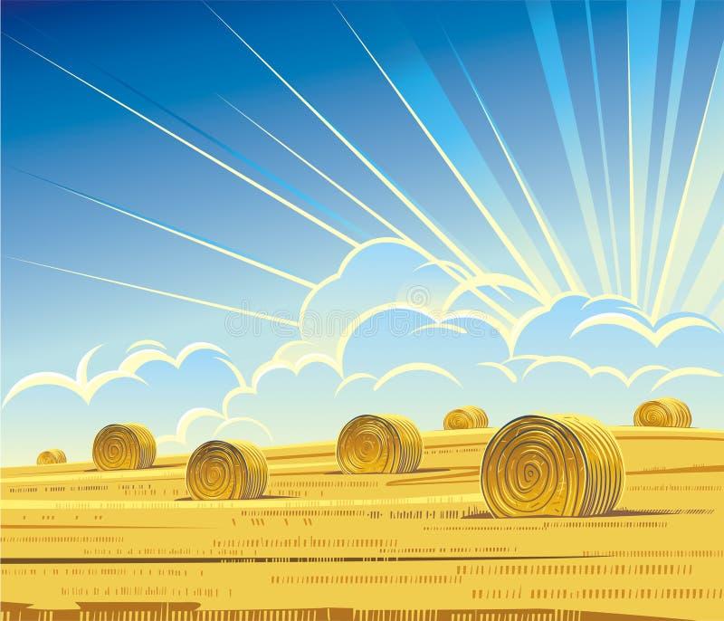 Summer rural landscape with hay royalty free illustration