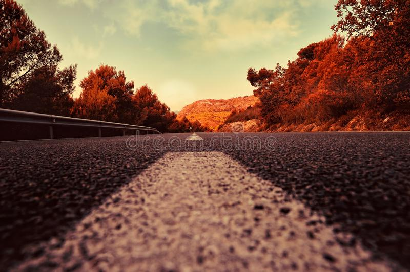 Summer rural landscape with road stock photo