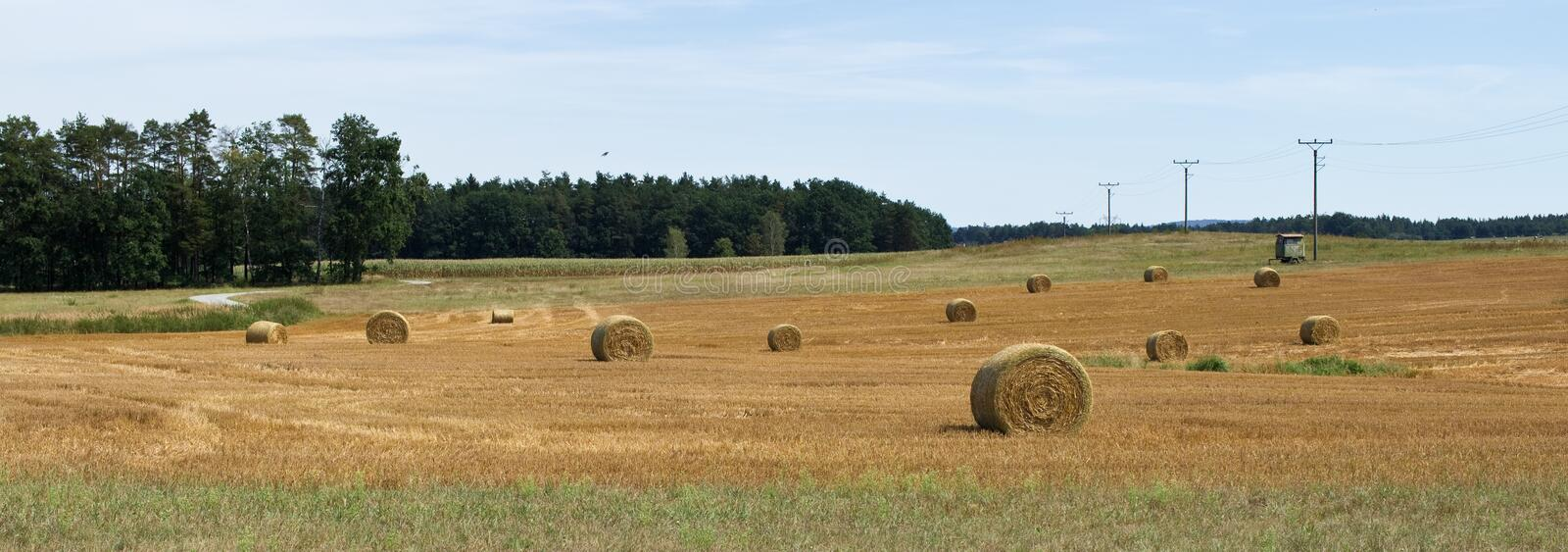 Summer rural landscpae. Golden bales with hay. Forest. Electricity pylons. Electricity poles. Electricity posts royalty free stock photos