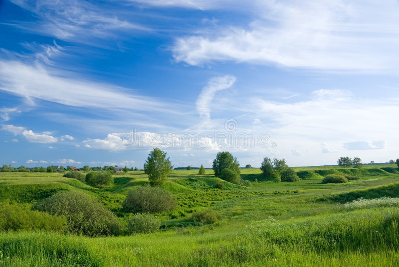 Summer russian landscape royalty free stock image