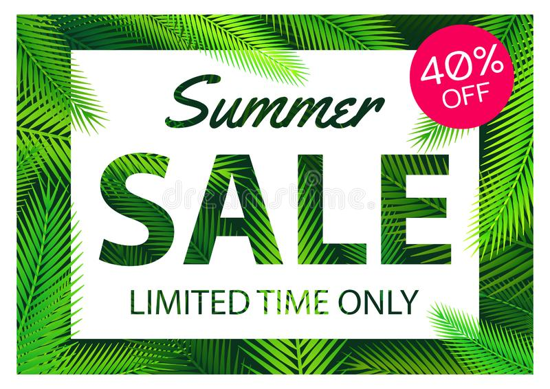 Summer sale offer banner palm coconut leaves overlay between white and pink label,modern and fashionable design vector illustration