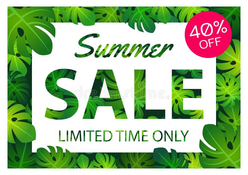 Summer sale offer banner philodendron leaves overlay between white and pink label,modern and fashionable design stock illustration
