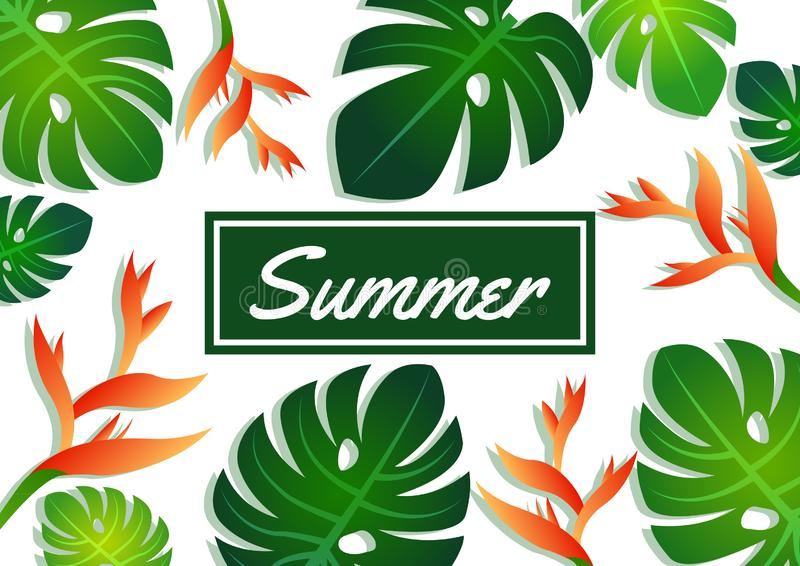 Summer sale offer pattern banner philodendron leaves, craw crab flower and label,modern and fashionable design royalty free illustration