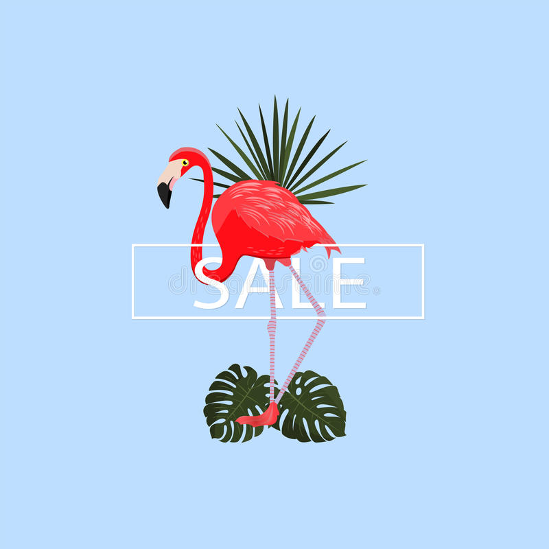 Summer sale tropical poster. Vector illustration. Summer blue background with elegant flamingo and tropical leaves. Exotic bird. G stock illustration