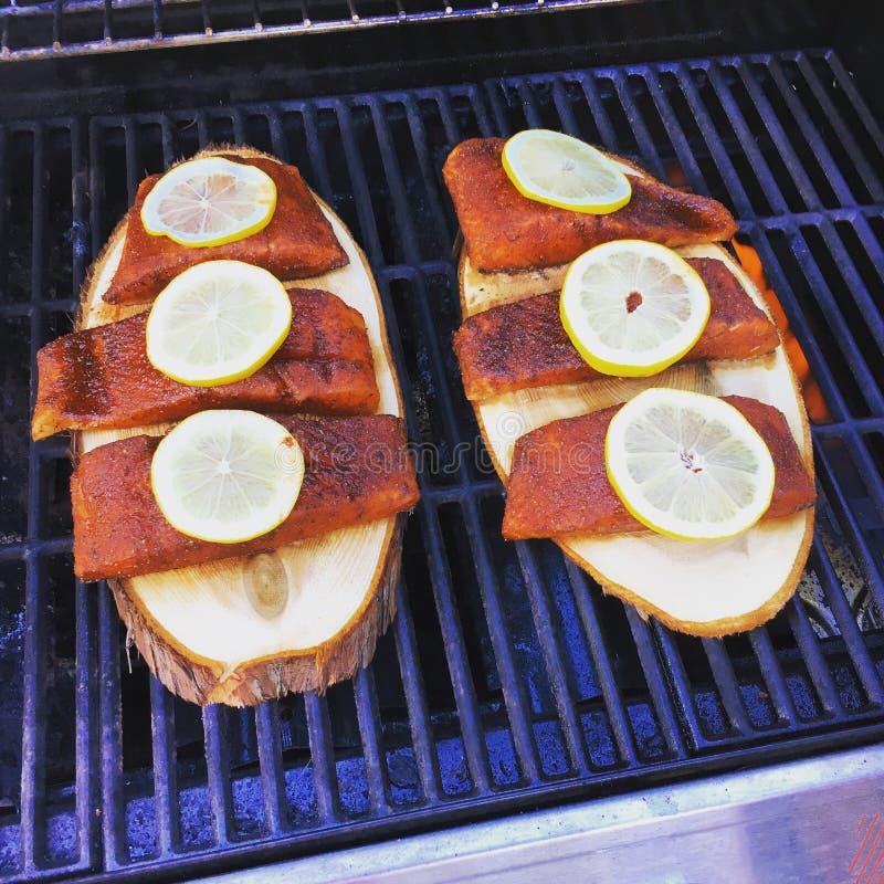 Summer salmon stock photo