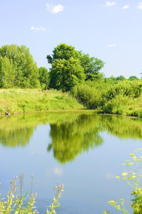 Summer scenery royalty free stock photo