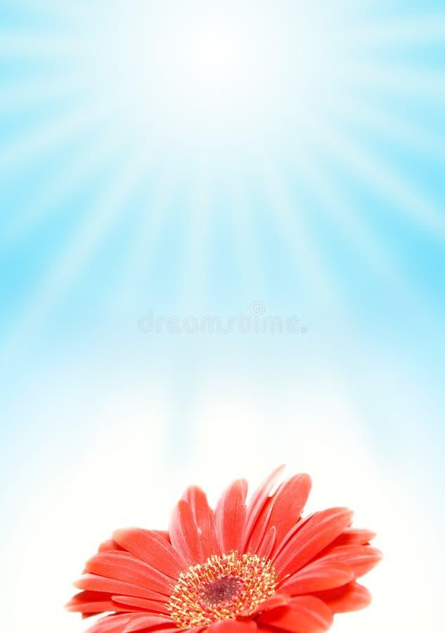 Free Summer Scenics Stock Image - 2344541