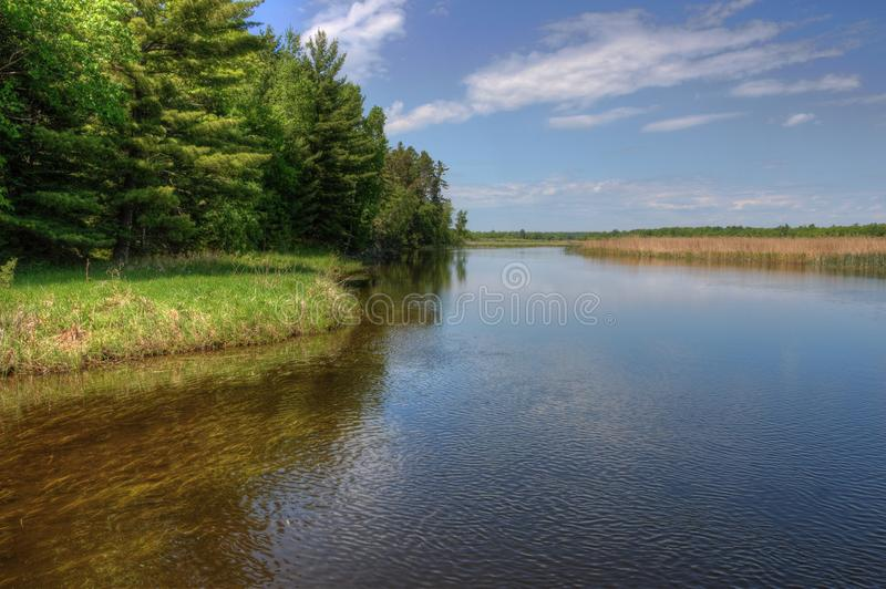 Summer in Schoolcraft State Park located in Northern Minnesota royalty free stock photo