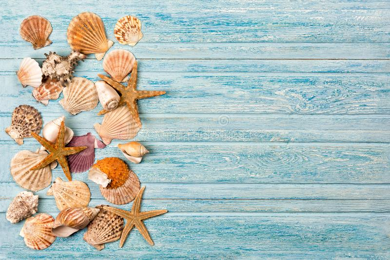 Summer sea background - shells, star on a wooden blue background stock images