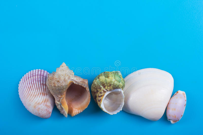 Summer sea vacation mockup background. Notebook blank page with Travel items on blue table. Sea shells, pebbles, top. Summer sea vacation background. Notebook royalty free stock photos