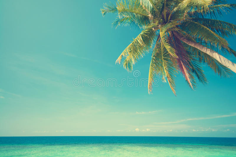 Summer sea view. Retro vintage style summer sea view with coconut tree at Perhentian island, Malaysia royalty free stock photography