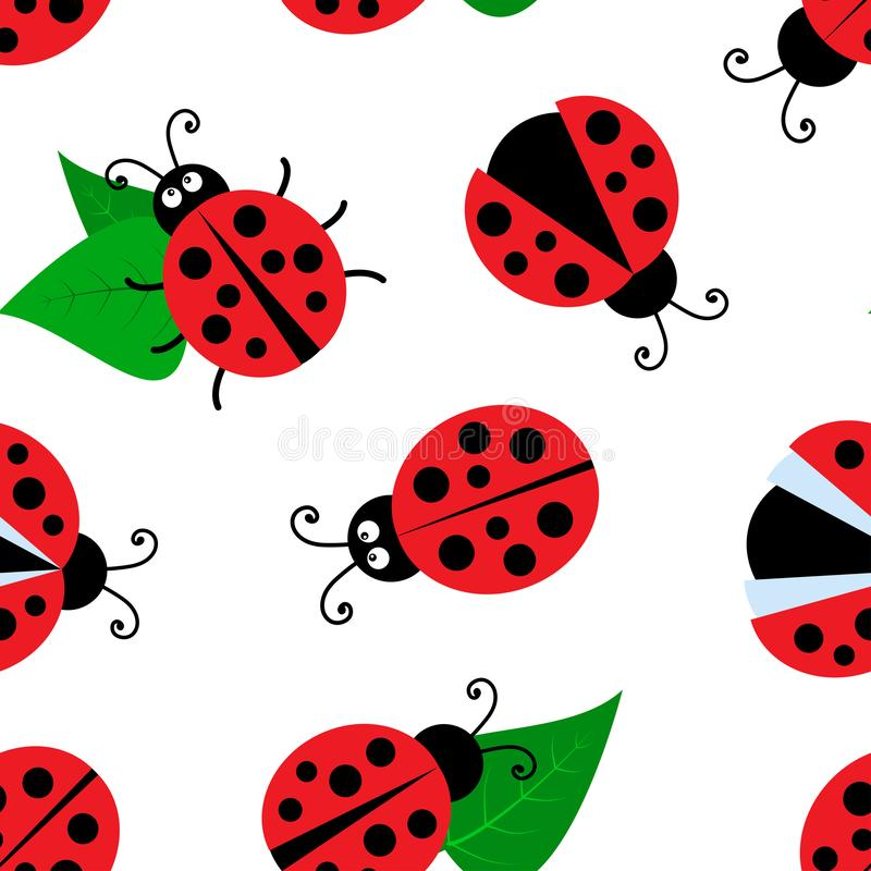 Summer seamless pattern with ladybugs and leaves isolated on white background. Vector. Illustration stock illustration