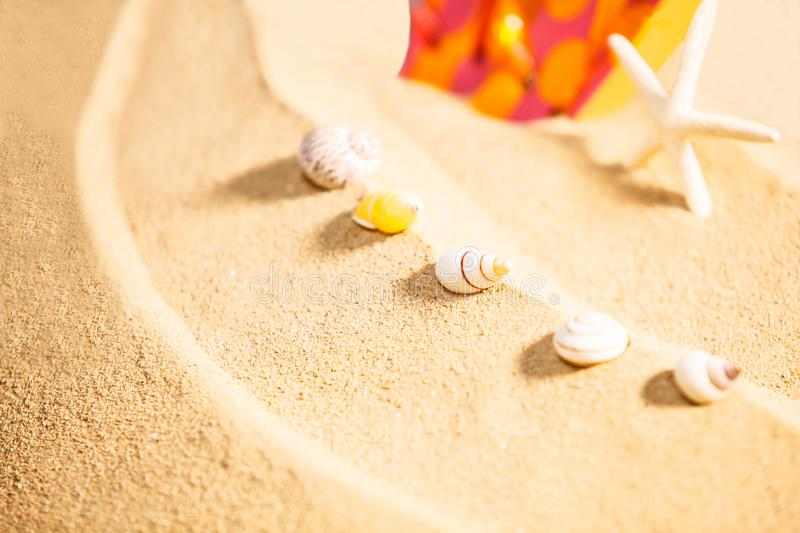 Summer Season, selective focus on seashells with starfish and spotty sandals or dotty flip-flop on sandy beach background royalty free stock images