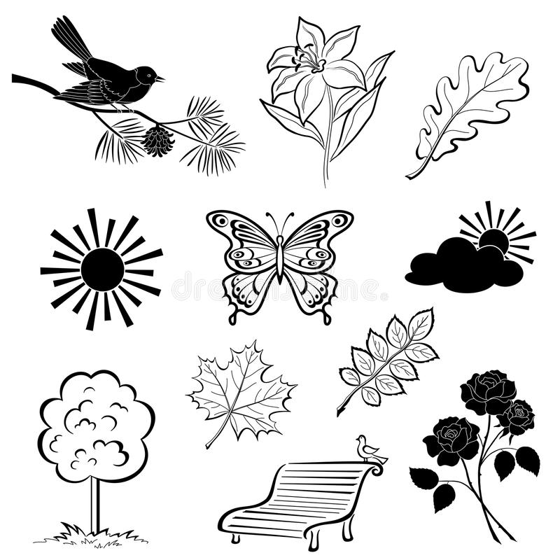 Download Summer set, silhouette stock vector. Image of flora, graphic - 25875771