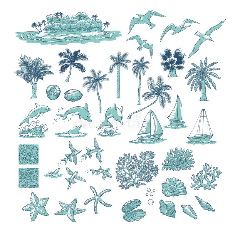 Summer set tropical plants marine and water animals. Island with palm among ocean, different dolphins seagulls fish and other unde vector illustration