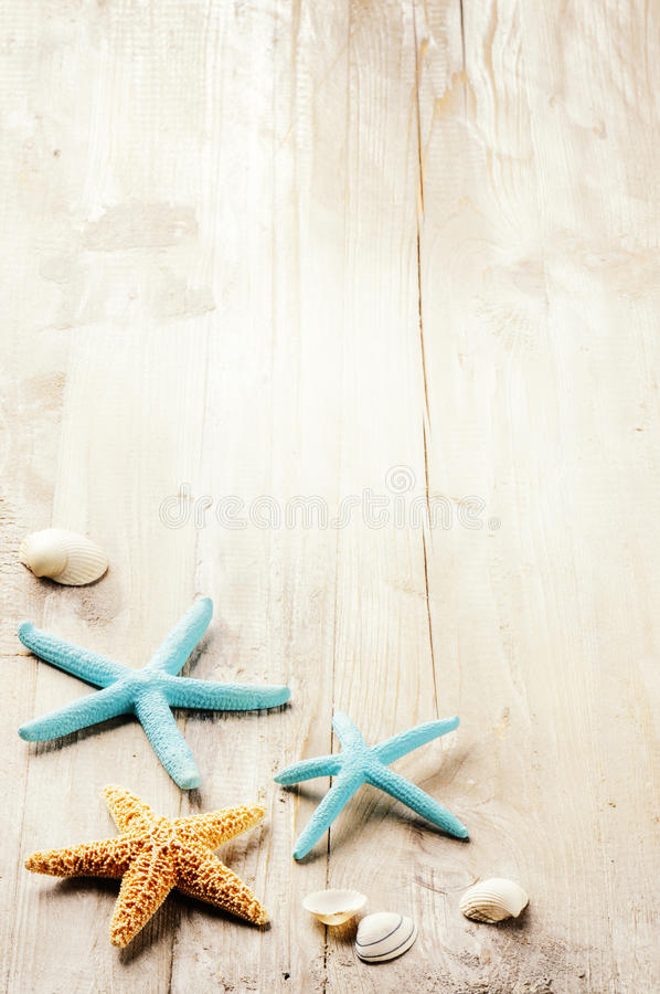 Summer setting with sea shells on old wooden background. Copy space stock photo