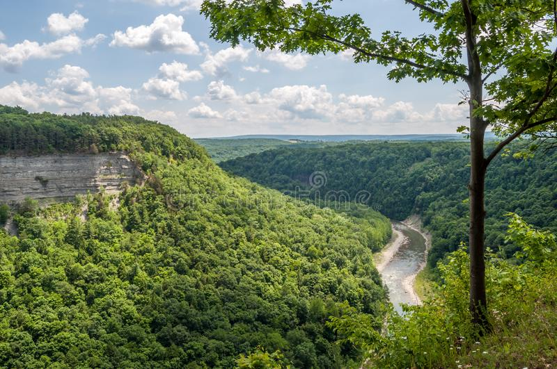 Summer Shade on the Genesee River. The Genesee River flows through the canyon among the shaded trees of New York`s Letchworth State Park stock image